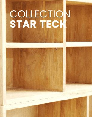 RDS-Vignettes-Mobile-Sous-cate_gorie-Collection-Star-Teck_1_